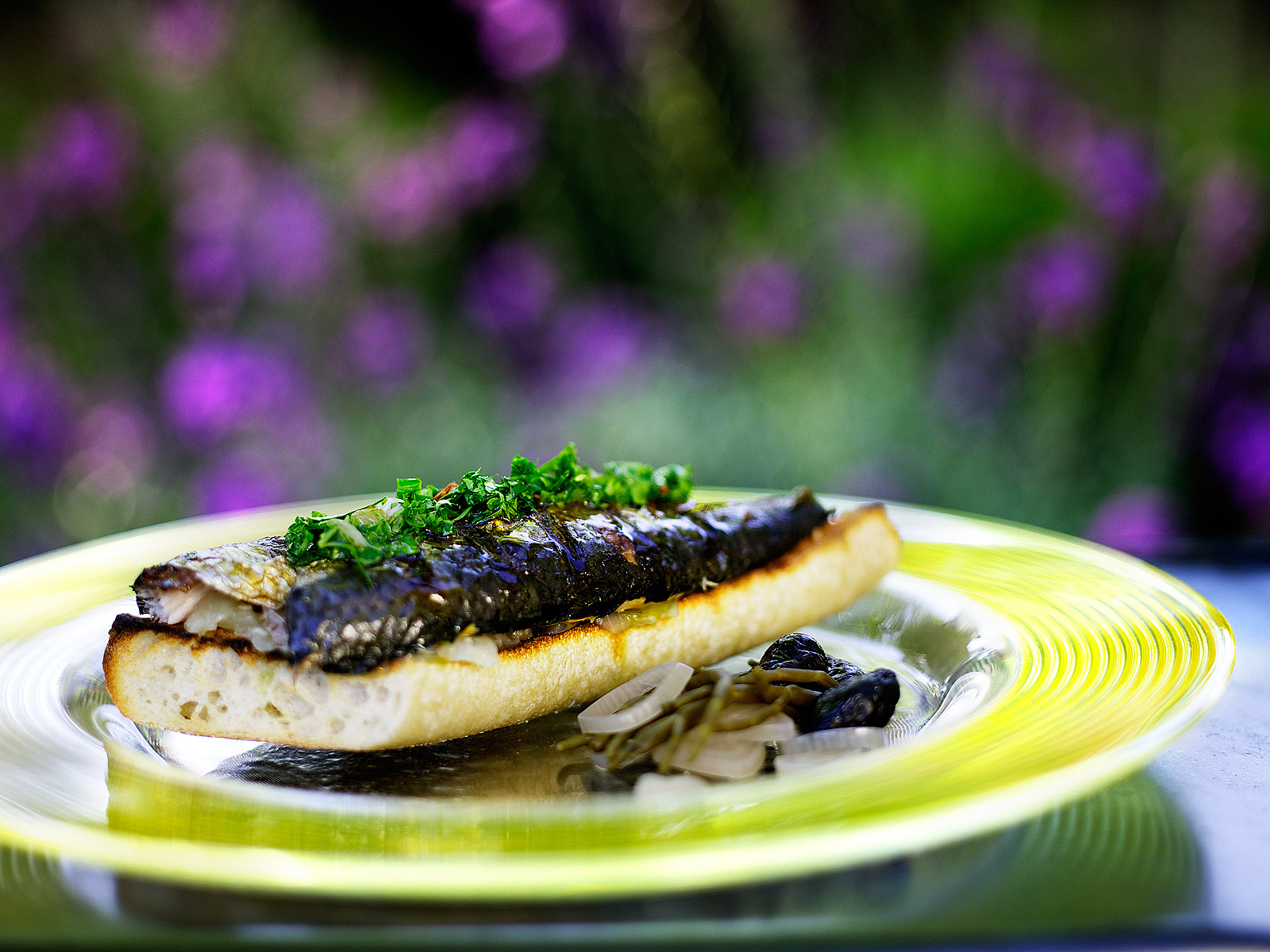 Open sardine sandwich- Grilled sardines- Best food photography